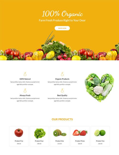 Organic Food - Landing
