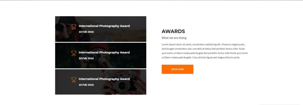 divi-photography-template-awards-section